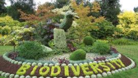 Biodiversity  ...