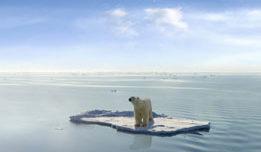 Arctic & Antarctica  ...
