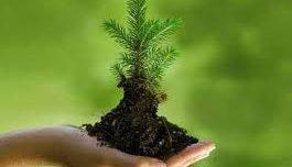 Our Environment - A Crash Course  ...
