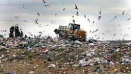 Waste is Everywhere  ...