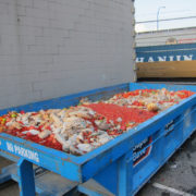 Wasted food is world's third-biggest carbon emitter after China and US: UN