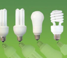 energy_efficient_light_bulbs-275x240