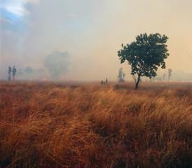 Cool burning benefits communities – Upper Primary