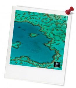 hardy reef wwf