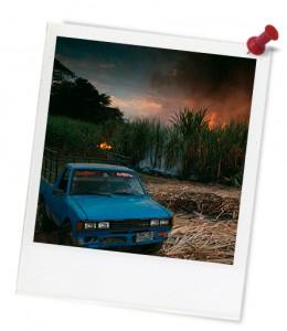 TCE-Burning-sugar-cane-photoframe2