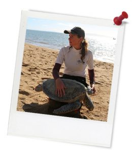 blue_christine_turtle_1q4a2418_photoframe