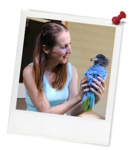 blue_jennifer_bird_1q4a2135_photoframe