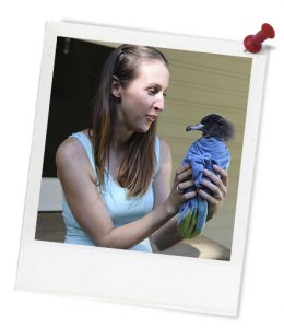blue_jennifer_holding_injured_bird_1q4a2136_photoframe