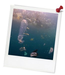 blue_plasticbaglookslikejellyfish_untitled_1-464-1_photoframe