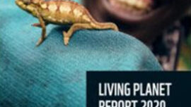 Living Planet Report...
